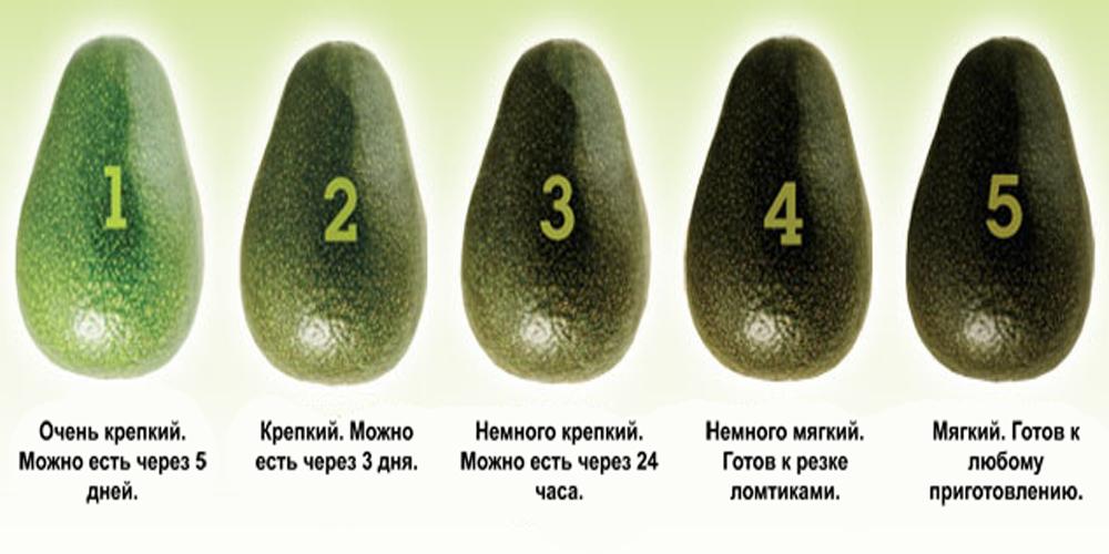 Если купленный авокадо оказался неспелым?